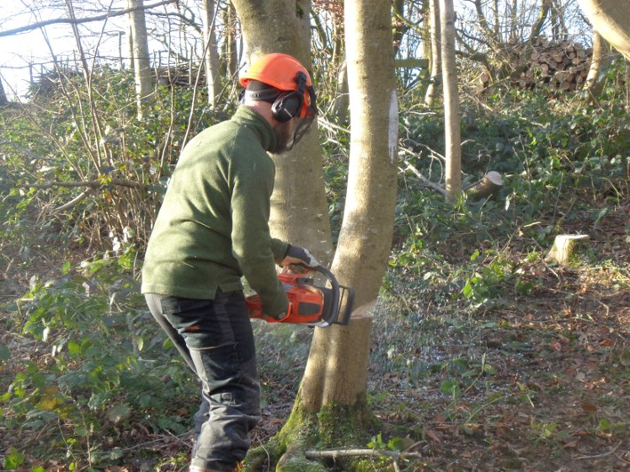 Woodland management weekend January 2020 | bushcraft | Kent