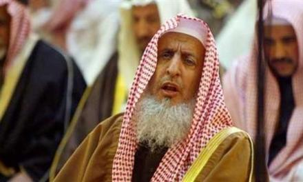 Saudi Arabia's top cleric says Iranians are 'not Muslims' – BBC News