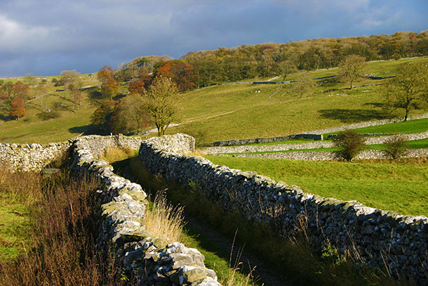 Walls and track near Langcliffe, Ribblesdale