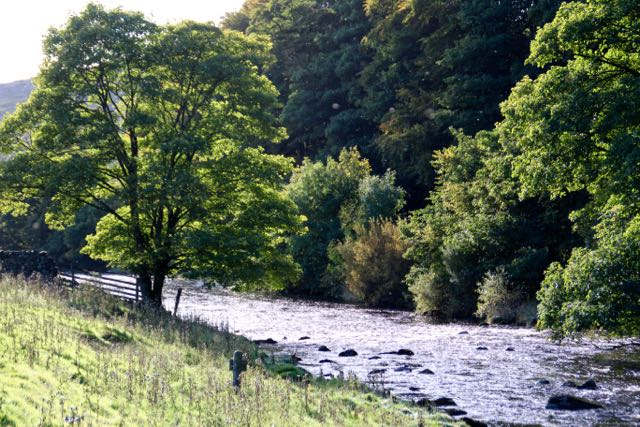Ribble at Langcliffe