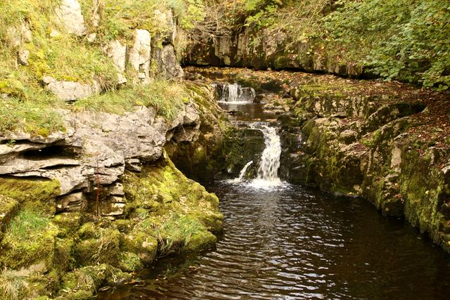 Thorns Gill