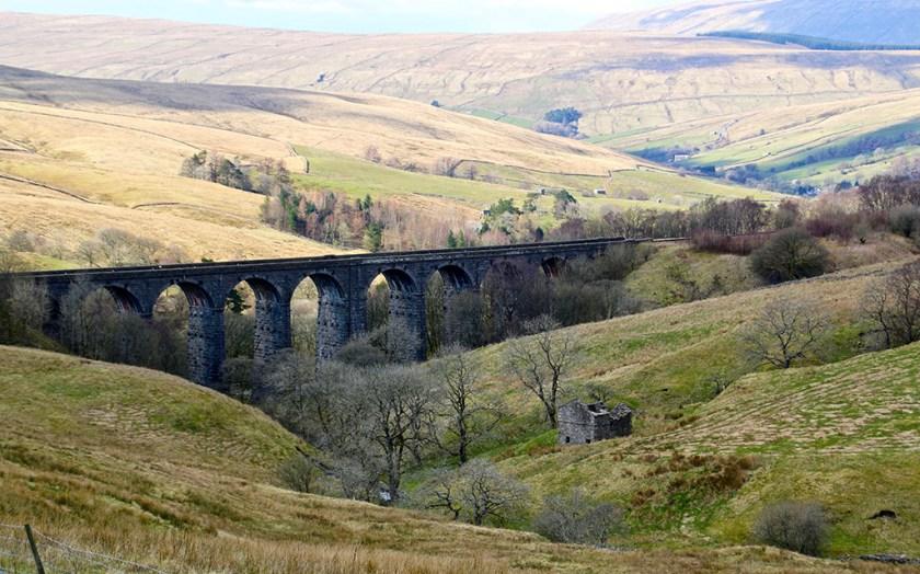 Yorkshire arten1