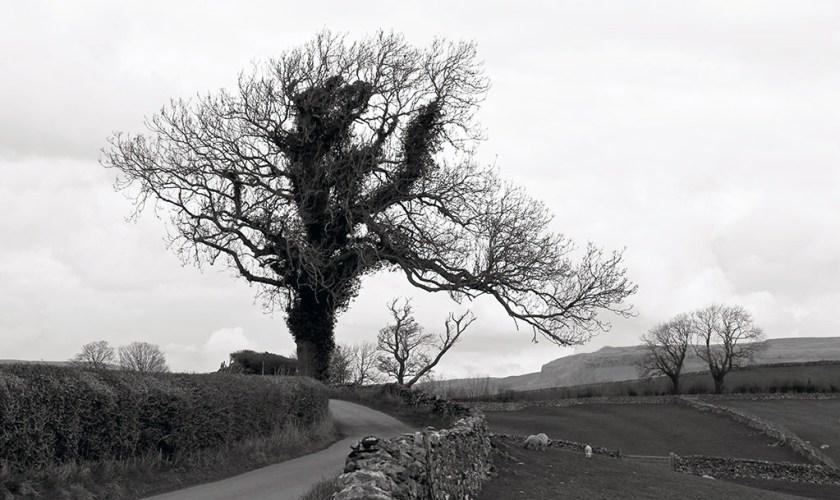 Yorkshire Lawkland