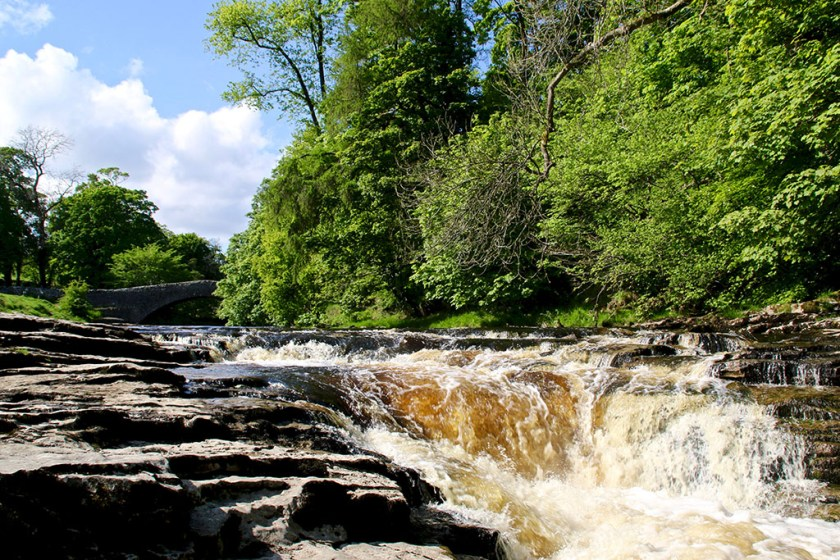 Dales foss