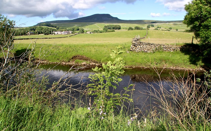Ribblesdale pygriver