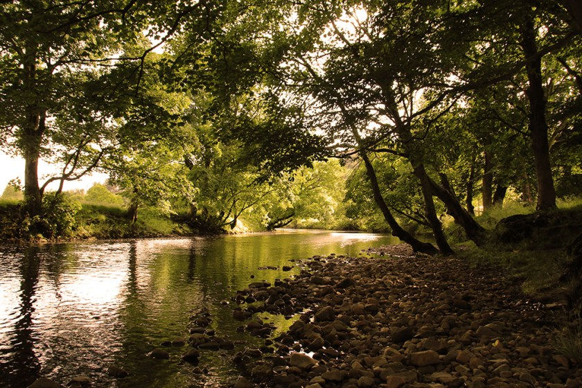 Ribblesdale river