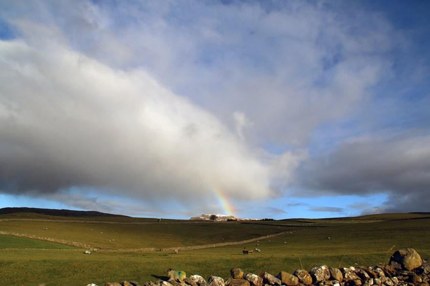 Dales rainbow2
