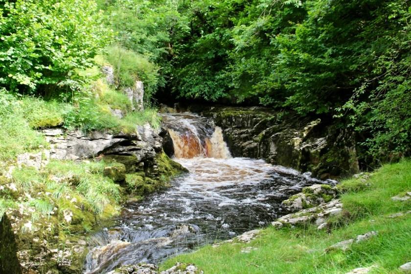 dales waterfalls