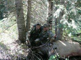 Bull I took on an Archery hunt with my son on forest 2009