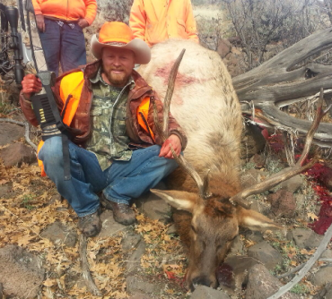 Bull I took on 521 BLM 2013