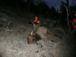 My sons first cow 521 BLM 2008