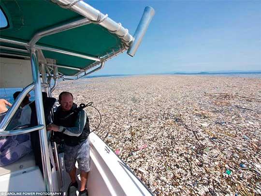 Imagem: Um mar de plástico - Fotos chocantes do lixo sufocando os oceanos