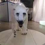 The Polar Museum in Tromso