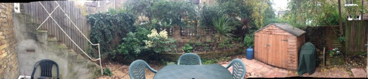 Our Garden, March 2014