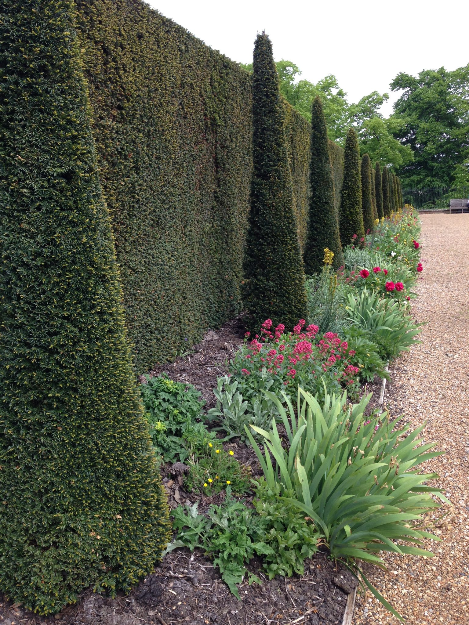 Ham house richmond london jack wallington garden for Garden design richmond