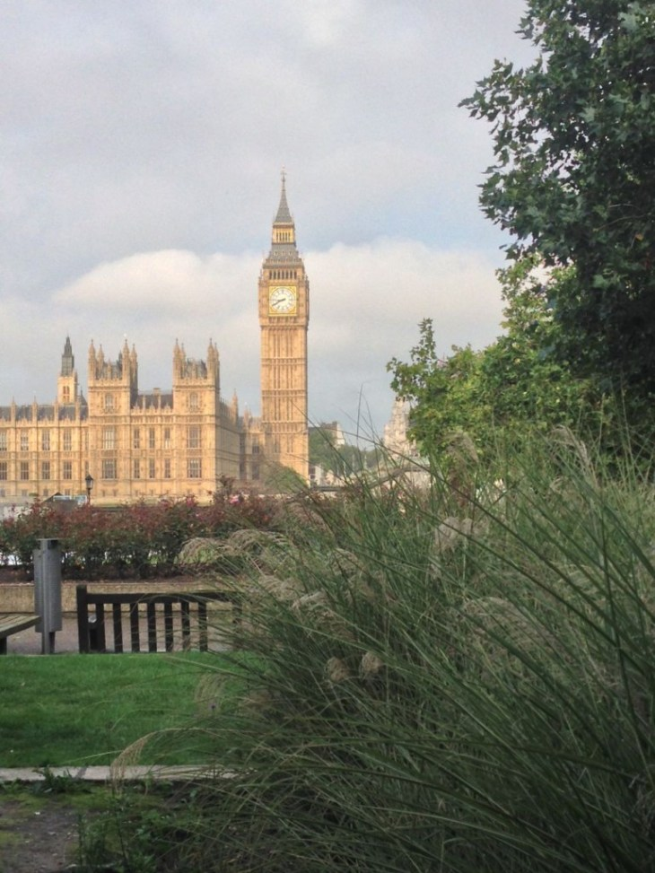 Big Ben and the Houses of Parliament seen from the garden in front of St Thomas' hospital at Waterloo / Southbank