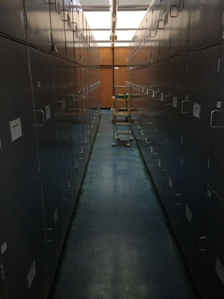 One aisle at the vast herbarium archive at the RGBE