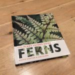 Book Review: Plant Lover's Guide to Ferns
