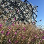 From the streets: Library of Birmingham's rooftop secret garden and futuristic municipal design