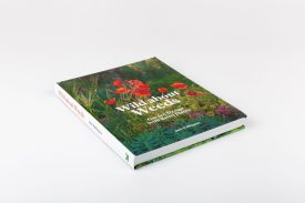 Wild about Weeds: Garden Design with Rebel Plants by Jack Wallington