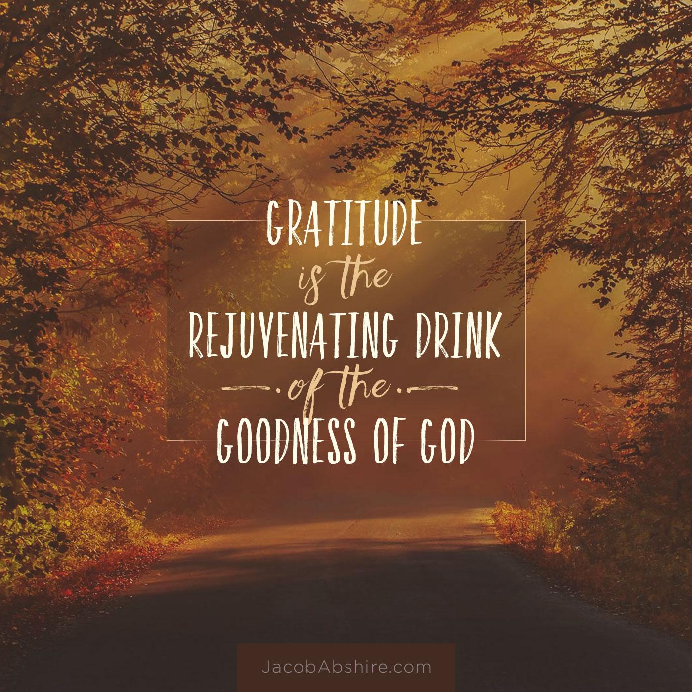 meme-gratitude-drink-goodness