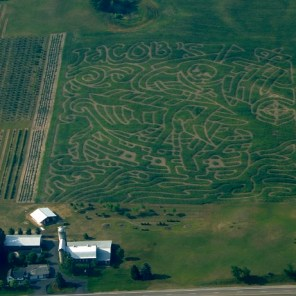 PIRATES OF JACOBS CORN MAZE 2011