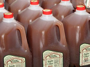 friske-orchards-michigan-wholesale-apple-cider-bulk-grocery-store-sell