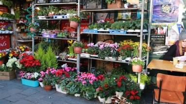 Flower market Israel