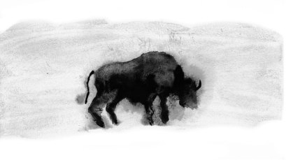 Small Grass Bison