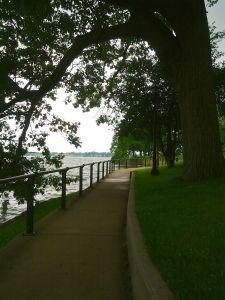 Path - Lake