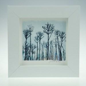 Seed Head Landscape -Framed Prints - Small Square-Pensthorpe Natural Park