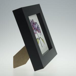 'Hydrangea Single Bloom'