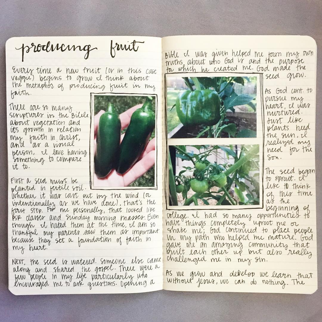 Used my Garden Journal as a place to write somehellip