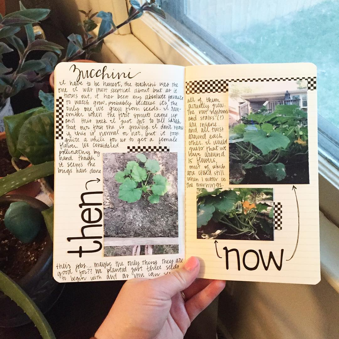 Sharing about our garden and my journal on the bloghellip