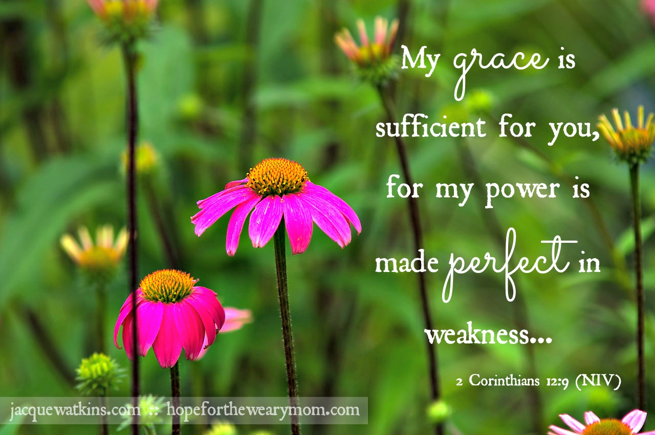 Image result for my grace is sufficient for you niv