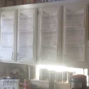Doesn't everyone have training plans invading their kitchen?