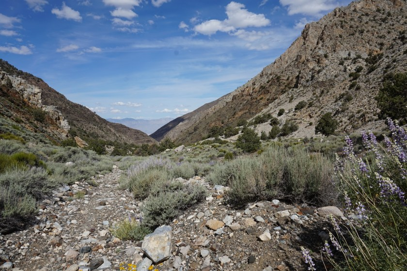 Looking back towards Panamint Valley.
