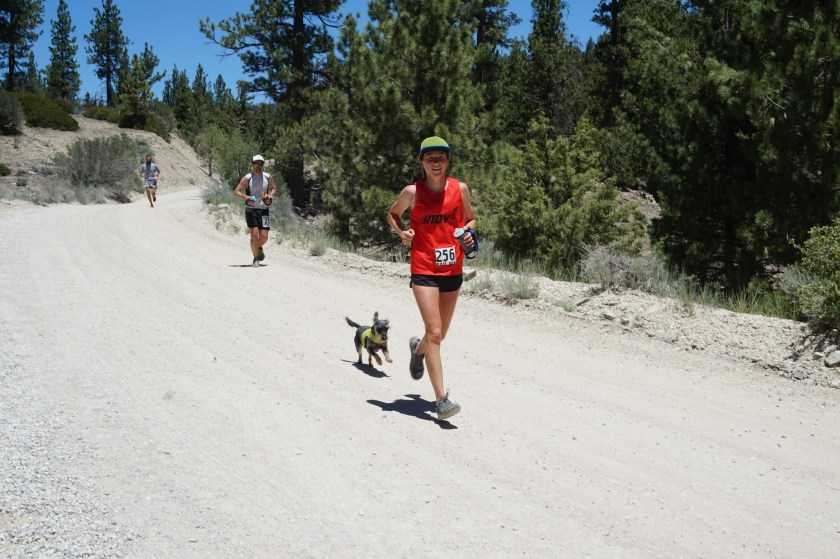 Running in to the last crew-accessible aid station, at mile 27. Cashew wanted to join along for a bit.