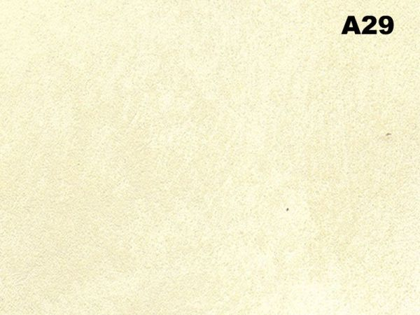 Visioni A29