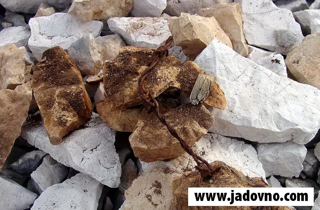 Мај 2006. - Пепео спаљених тијела логораша у камењару Слане - остатак бодљикаве жице