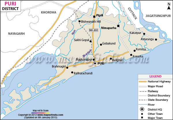 Odisha Govt Announces Free Transport Service for Nabakalebara Pilgrims