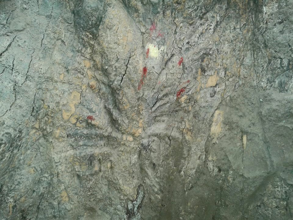 Mark of sarpa on lord Sudarshan Maha Daru