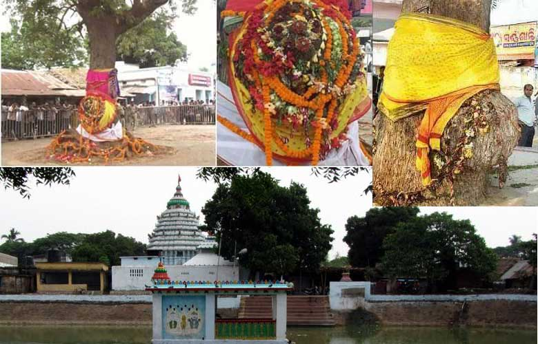 Balabhadra daru near Jhankad Sarala shrine