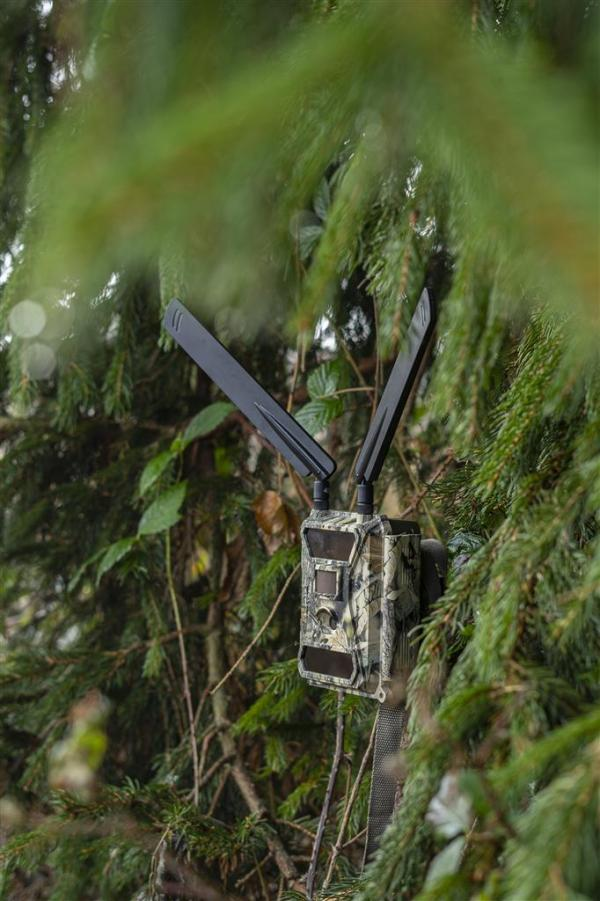 DÖRR Wildkamera 5G - 3 bei Jagdabsehen