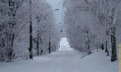 Winterjagd in Johnsbach - so macht Jagd Spaß