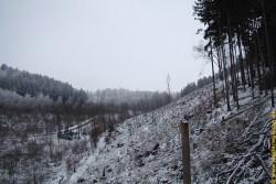 Winterjagd in Johnsbach