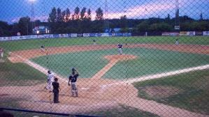 Beetles Minor League Baseball, MN