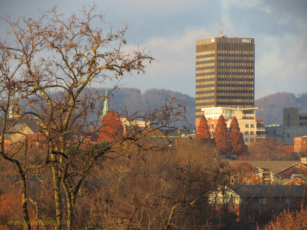 Downtown Asheville North Carolina