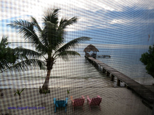 Buy property and live in Belize