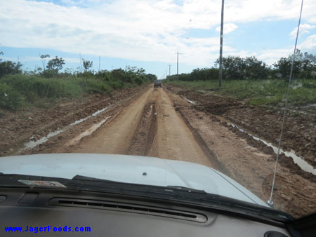 The Monkey River Road Is Bad!